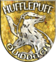 Hufflepuff™ Quidditch™ Badge.png