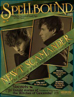 Spellbound – The Wizard Who Caught Grindelwald.jpg