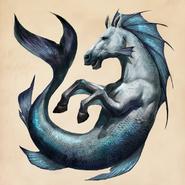 Hippocampus - FBcases