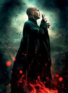 4639919-movies harry potter harry potter and the deathly hallows posters voldemort 3646x5000 wallpaper www.wallpapermay.com 36