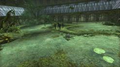 Transfiguration Courtyard Portable Swamp
