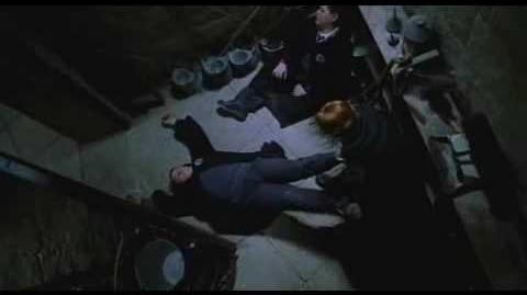 Harry Potter en de Geheime Kamer (film)
