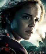 DH2 IAE Hermione