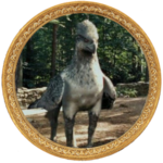 Hippogriffe