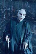 Voldemort 3