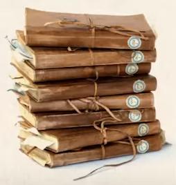 Newton Scamander's notebooks