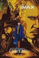 TCOG IMAX Poster