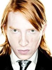 250px-Bill Weasley Deathly Hallows promotional image.jpg