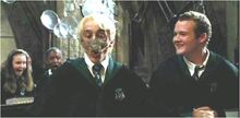 Draco has spider on his face.jpg