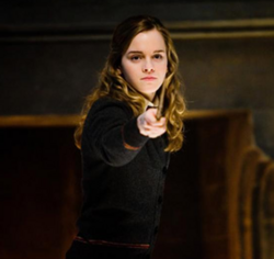 HermioneAcceptedCombativePosition.png
