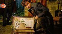 Fantastic Beasts Crimes of Grindelwald Newt Scamander Deleted Scene