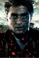 TDHp2 Textless Poster Harry close
