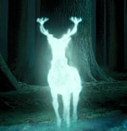 Harry's Patronus.jpg