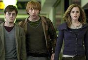 Harry-Potter-e-i-doni-della-morte.jpg