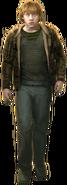 Ronald Weasley WU