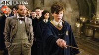 Fantastic Beasts Crimes of Grindelwald Ridiculous Scene 4k