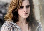 Hermionescars.jpg