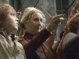 Hp-the-deathly-hallows-madame-pomfreys-wand.jpg