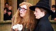 Professor Trelawney and McGonagall closeup.jpg