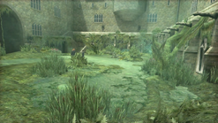 Paved Courtyard Portable Swamp