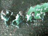 爱尔兰魁地奇国家队