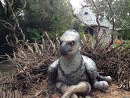 Buckbeak 2