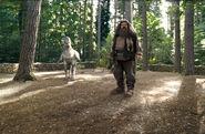 Hagrid i Hardodziob