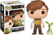 Newt&PicketPOP