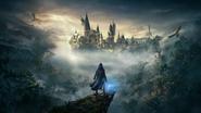 Szyld 2 (Dziedzictwo Hogwartu)