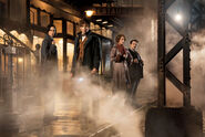 Fantastic Beasts and Where to Find Them promo