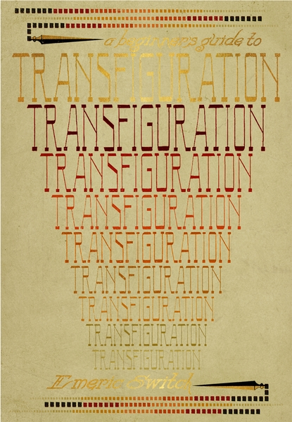A Beginner's Guide to Transfiguration