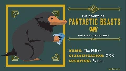 What is a Niffler? The Beasts Of Fantastic Beasts And Where To Find Them