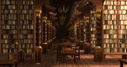 Biblioteka (Harry Potter Hogwarts Mistery)