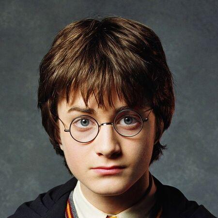 COS promo Harry Potter Hogwarts uniform cropped.jpg