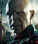 DH2 IAE Voldemort.jpg