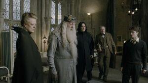 Dumbledore w skrzydle.jpg