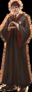 Neville Longbottom WU