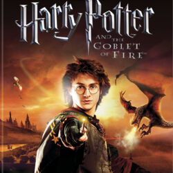 Harry Potter and the Goblet of Fire (video game)