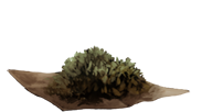 DriedNettles.png