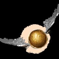 PM-Item GoldenSnitch.png