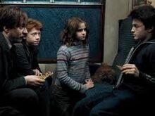 Harry po ataku DEMENTORa.jpeg