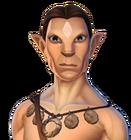 Torvus profile - HM