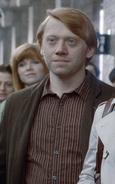 Ron Weasley age 37