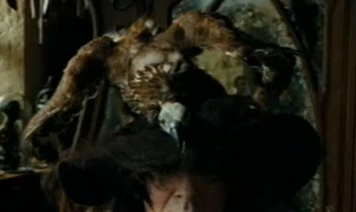 Augusta Longbottom's vulture hat