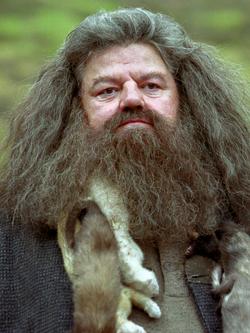 Rubeus Hagrid.png