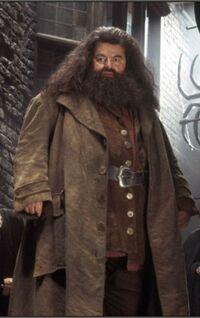 Hagrid dmbeldore.jpg