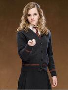 Hermione-Granger-harry-potter-18062494-599-800