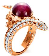 Severus's ring