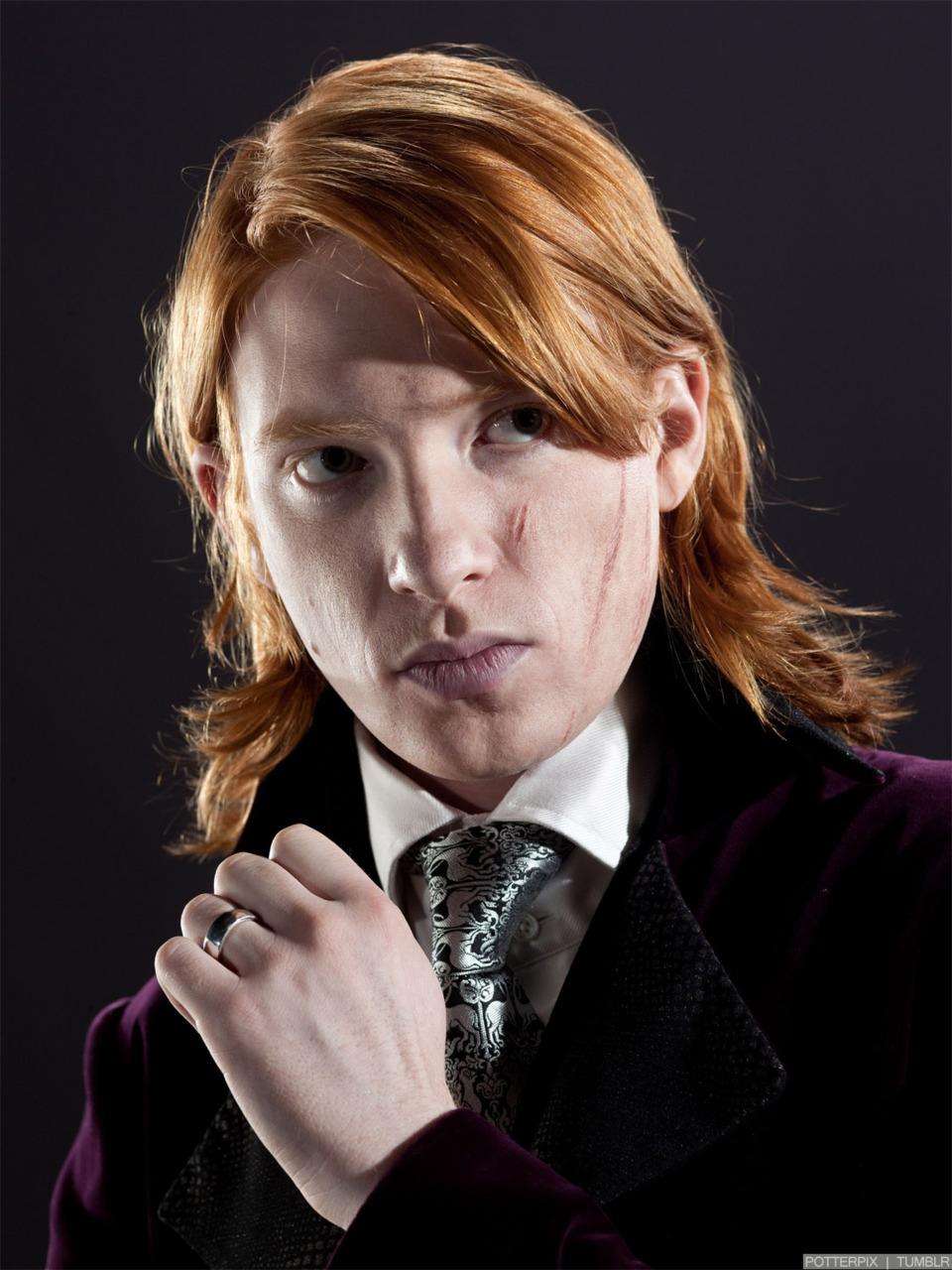 Bill Weasley (Wolf Among Us)