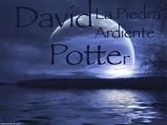 David Potter La Piedra Ardiente